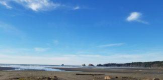 Beachcombing Grays Harbor