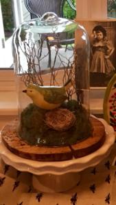 DIY Cloche Garden Spring Bluebird