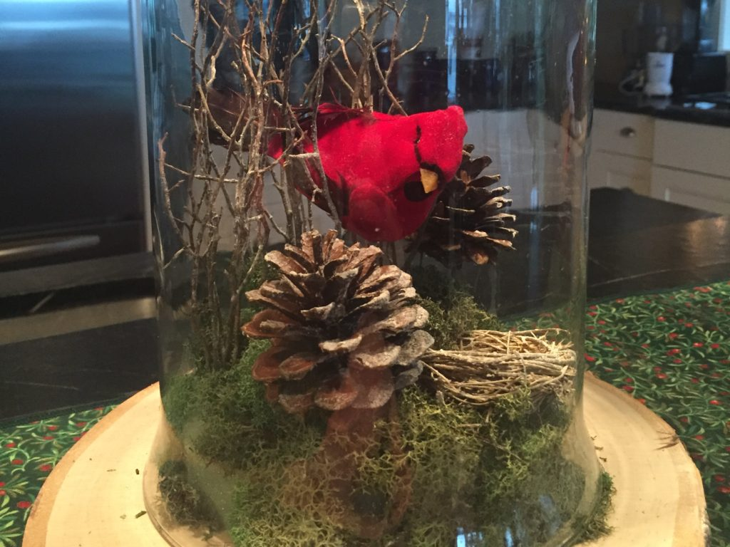 Try Your Hand At A Diy Cloche Garden Thurstontalk