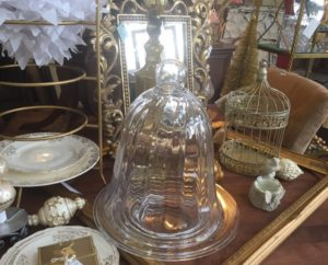 DIY Cloche Garden vintage bell jar
