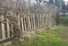 AJB Landscaping and Fence Wisteria fence