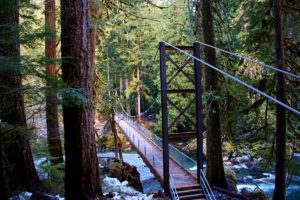 Staircase Olympic National Park