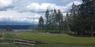 Alderbrook Golf and Yacht Club The Point