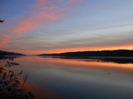 Hood Canal for Earth Day