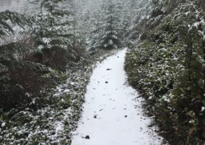 Experience Olympia Rock Candy Trail Even in snow via TOS