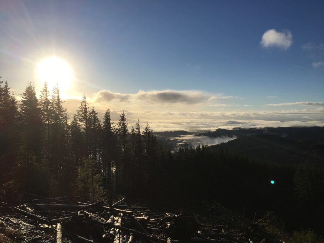 Experience Olympia Rock Candy Trail Mountain beauty via TOS