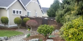 Gold Standard Landscaping and Lawn Services river rock
