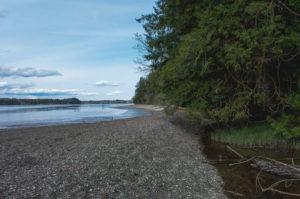 Olympia Beaches