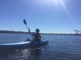 Kayaking Budd Inlet