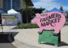 Yelm Farmers Market