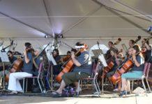 Olympia Symphony Orchestra Cello Capitol