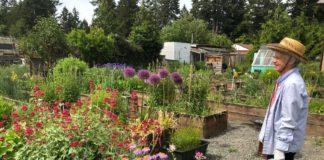 Panorama Pea Patch C&R Flower Garden