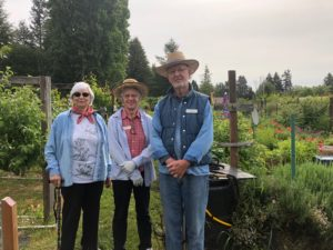 Panorama Pea Patch Garden Leaders