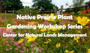 Native Prairie Plant Gardening Workshop Series @ Shotwell's Landing Nursery