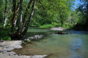 Skookumchuck River
