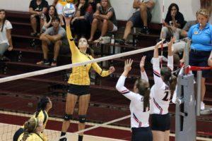 Lauren Wilson Volleyball