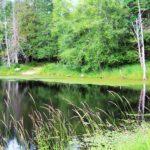 Darlin Creek Preserve Dedication 7