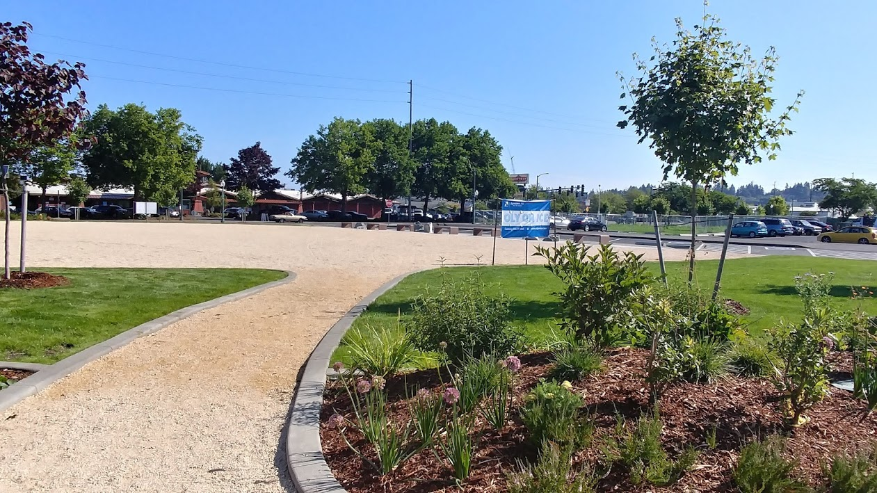 Seasonal Pump Track Open at Isthmus Park in Olympia