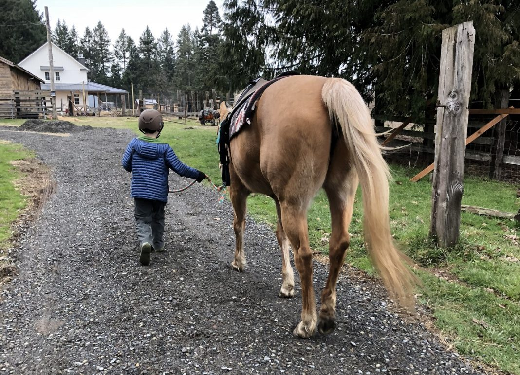 Rainy Day Ranch Therapeutic Riding Olympia child leading