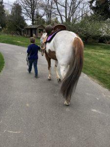 Rainy Day Ranch Therapeutic Riding Olympia dreams