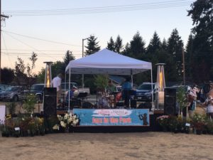 jazz in the park bandstand