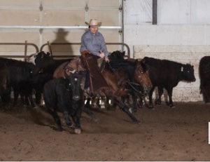 Josey Howard Rodeo Cutting
