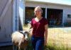 Thurston County Fair 4-H Lisa Chapman Goats