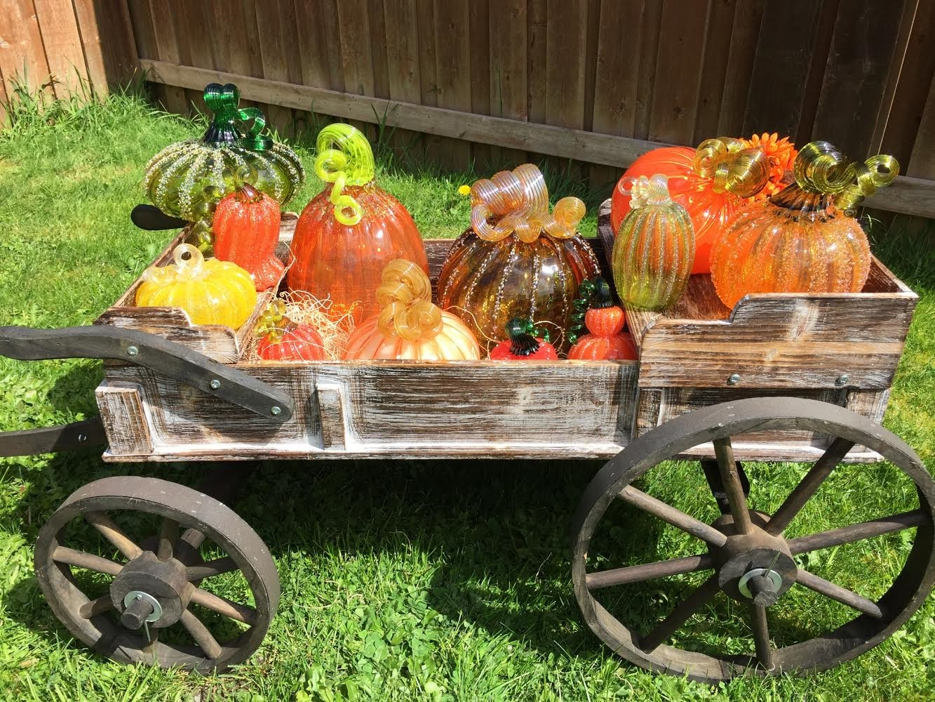 Thurston County Fall Activites 2018 Glass Pumpkin Patch variety