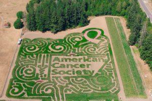 Thurston County Fall Activities 2018 Rutledge Corn Maze American Cancer Society