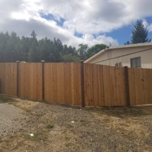 AJB Landscaping and Fence Cora Rose 4