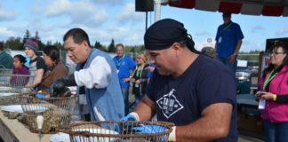 OysterFest Shelton shucking competition
