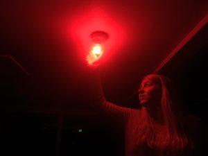 Avanti Haunted House Lightbulb