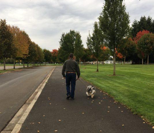 Dog Walks Thurston County Rainier Vista Community Park