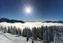 Gundersen Dental Care snow capped trees