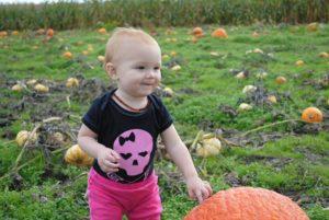 Hood Canal pumpkin patch