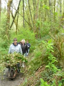 Trillium Park Volunteer Work Party @ Trillium Park | Olympia | Washington | United States