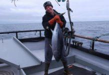 Sassy Seafood Libies Tuna