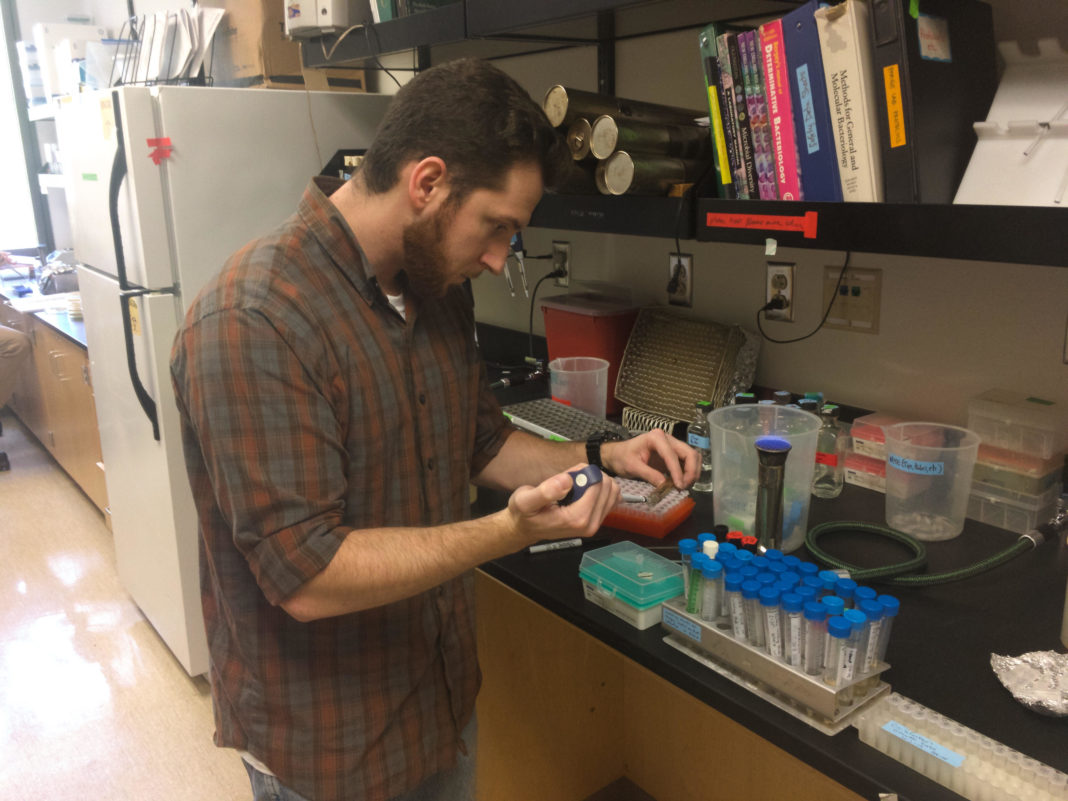 The Evergreen State College Phage Lab Steven Vananzo