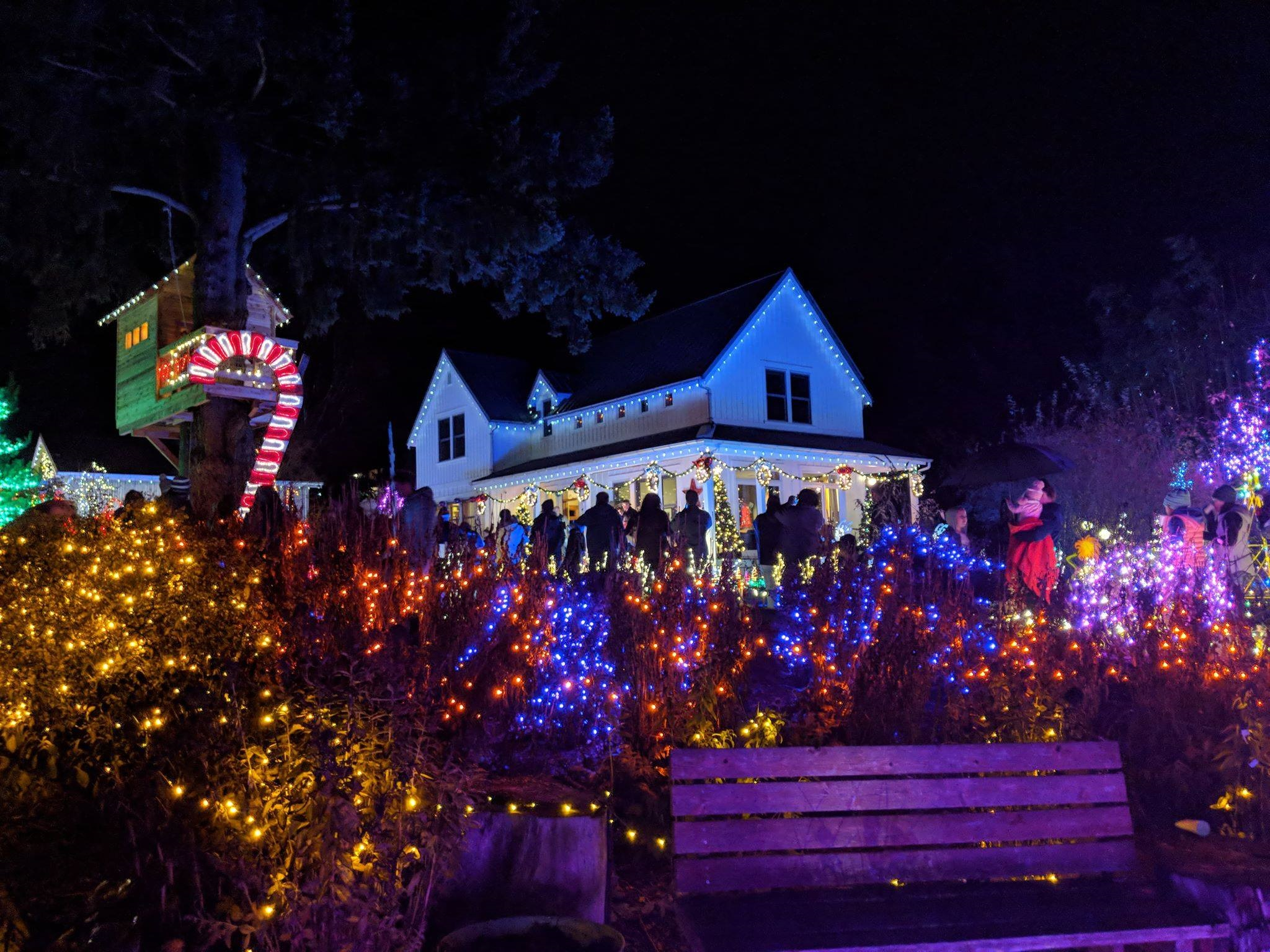 Holiday Lights With Boggs Inspection Services And Oly