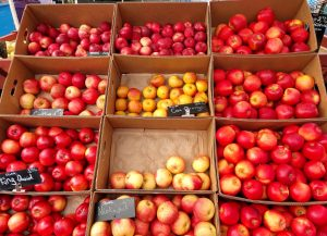 Olympia Farmers Market Apples