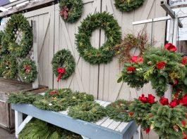 Olympia Farmers Market Wreath Galore