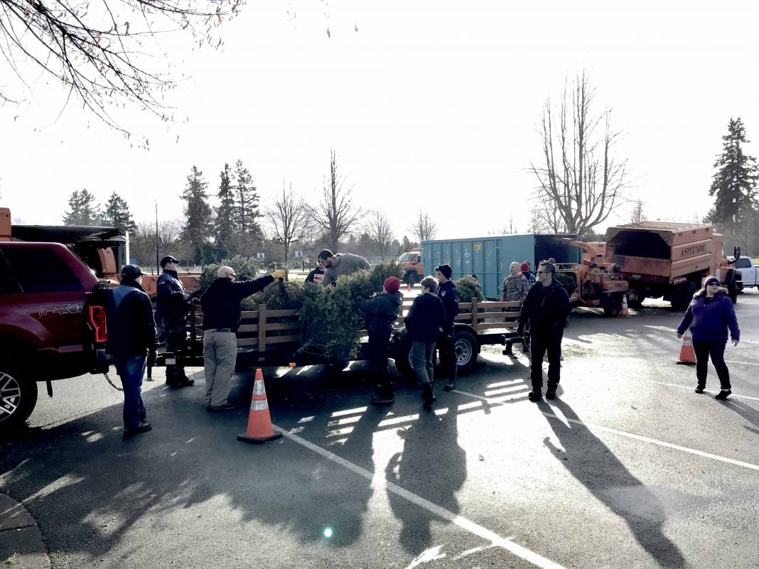 City of Lacey Christmas Tree Round Up Loading Trees