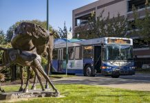 Intercity Transit horse sculpture