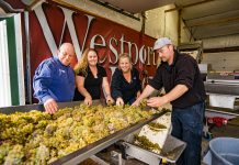 WEstport WInery family