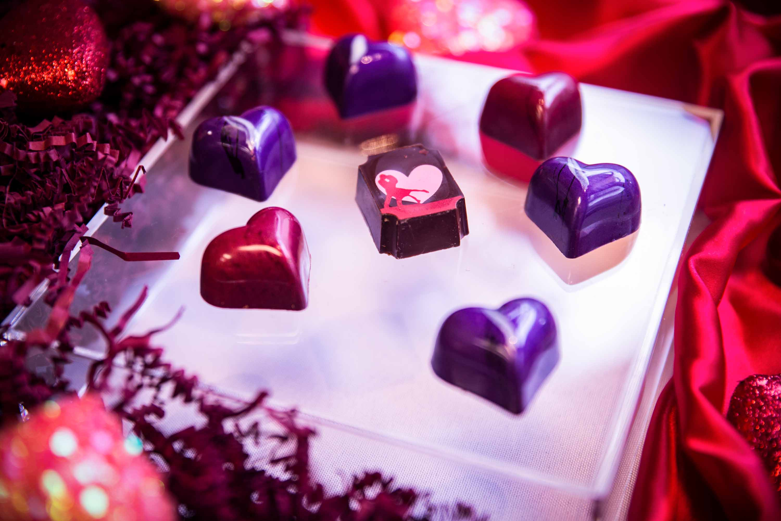 Things to Do in Olympia and Surrounding Areas Valentine's Day Weekend: February 14-16 - ThurstonTalk