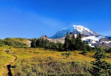 Hiking trail at Mount Rainier National Park
