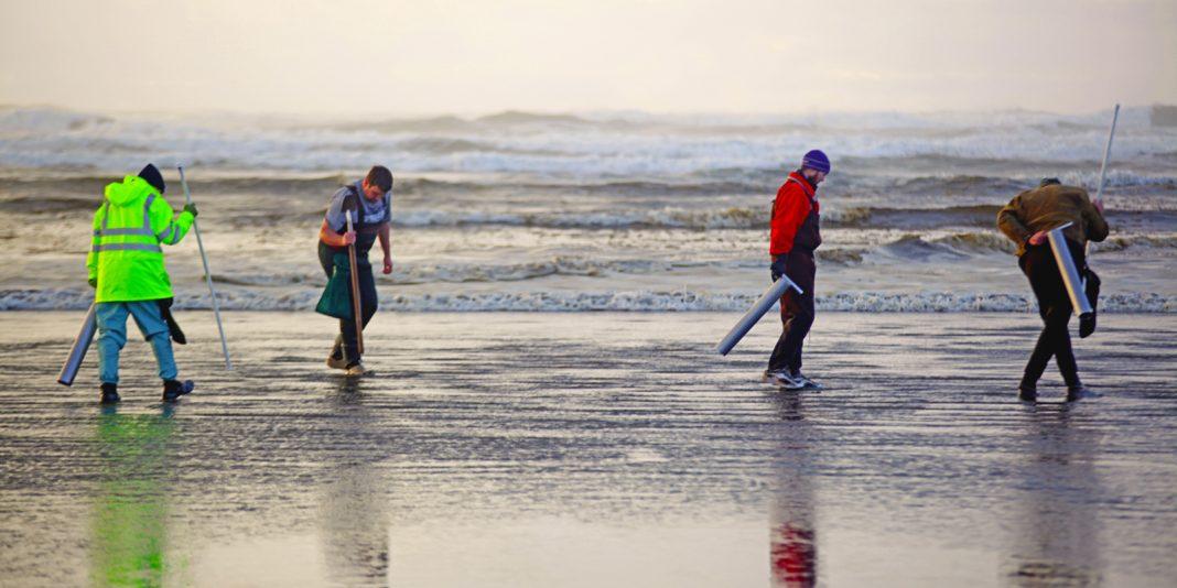 Quinault Beach Resort Casino clam diggers on beach 2