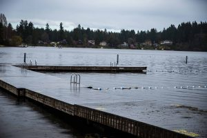 City of Lacey Long Lake Park Safety Improvements Dock Removal
