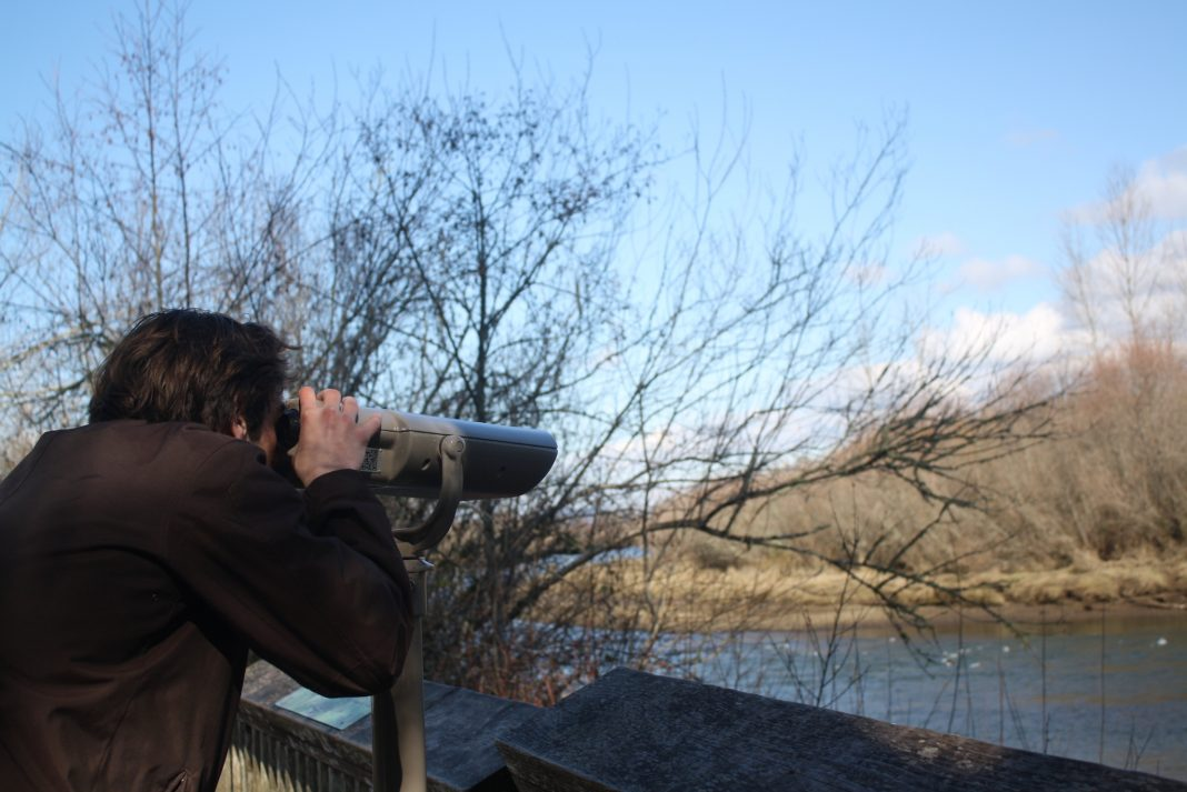 Nisqually viewing wildlife