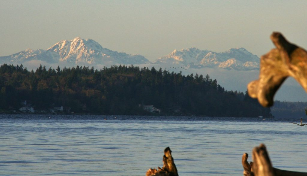 Olympic Mountains from Burfoot Park